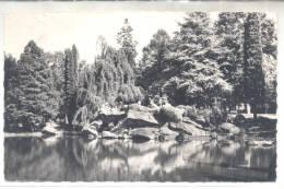CPA 59 - VALENCIENNES (Nord) - Le Parc De La Rhonelle - Valenciennes