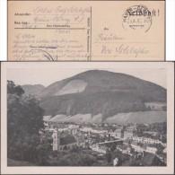 Allemagne - Autriche 1943. Carte En Franchise Militaire Du Parti Nazi (NSDAP). Waidhofen An Der Ybbs, Hitler, Montagnes - 2. Weltkrieg