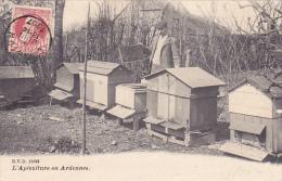 Corbion  L'Apiculture En Ardennes  Circulé En 1907 - Bouillon