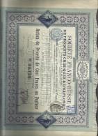 Societè Franco-russe De Produits Chimiques & D'explosies Action De 100 Francs   Doc.190 - Russia