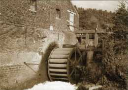 TERNAT (Vlaams-Brabant) - Molen/moulin - Historische Opname Van De Molen Van Opalfene In 1977. Prentkaart In Sepiabruin. - Ternat
