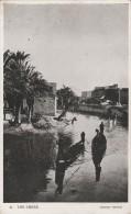 The Creek   - Scan Recto-verso - Iraq