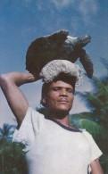 Fisherman Carrying Hawk's Bill Turtle At Balandra Trinidad & Tobago - Trinidad