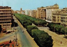 TUNISIE     TUNIS    AVENUE  HABIB  BOURGUIBA     (NUOVA) - Tunisie
