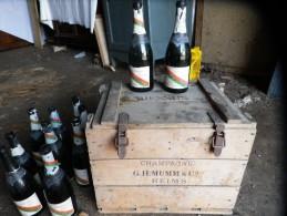 CAISSE EN BOIS CHAMPAGNE G H MUMM & C° Avec 11 Bouteilles Vides DOUBLE CORDON - Champagne & Mousseux