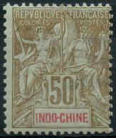 Indochine (1900) N 21 * (charniere)