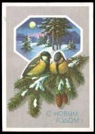 Russia USSR 1990 Stationery Pc Birds: Titmouse On Winter Year Tree - Oiseaux