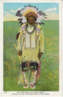 Native American Indian Iron Hail Aka Dewey Beard Wounded Knee Battle Survivor, C1910s/20s Vintage Postcard - Native Americans