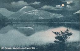65aa024 CPA 65 - 75 LOURDES La Nuit  Lac De Lourdes          Nv - Lourdes