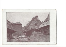 12888 -    Chyza Z Podkarpatské Rusi Melantrich Praha (Format 10X15) - Tchéquie