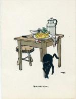 NATURE MORTE AVEC CHAT NOIR - - Illustrators & Photographers