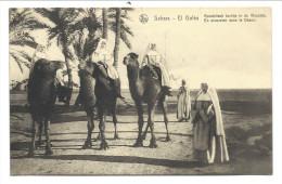 """///  CPA - Afrique - SAHARA - EL GOLEA -  """" En Excursion Dans Le Désert """" - Apostolischtochtjein De Woestijn     // - Sahara Occidental"""