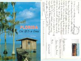 $5 A Day, Shack, Florida, United States US Postcard Posted 2003 Stamp - Etats-Unis