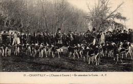 CHASSE à COURRE  CHANTILLY En Attendant La Curée - Hunting