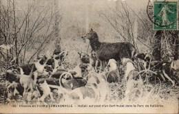 CHASSE à COURRE  ERMENONVILLE  Hallali Sur Pied D'un Cerf Mulet Dans Le Parc De Vallières - Hunting