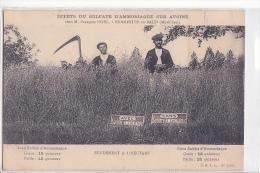 24390 Sulfate Ammoniaque Sur Avoine -chez Francois Noel à Kermestre à Baud (56) -publicite Engrais Moisson- CPSA 2200