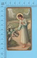 NB-31023 ( Gold Print Jesus Adolescent Arrosant Les Fleurs ) Image Pieuse Holy Card Santino  2 Scans - Devotion Images