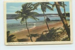 TRINIDAD - Ralandra Bav - Trinidad