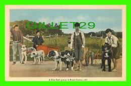 ATTELAGES DE CHIENS - A DOG CART GROUP OF KIDS IN RURAL QUEBEC - PECO - - Attelages
