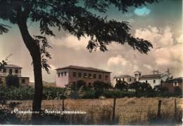 Lazio-latina-cisterna Di Latina Campoleone Lanuvio Veduta Case - Italia