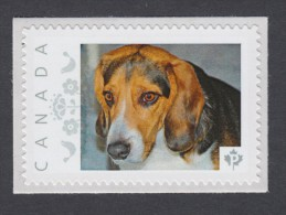 """BEAGLE  HOUND HUNTING DOG  MNH Personalized Picture Postage Stamp, """"P""""- Rate. Canada 2014 [p8fa5/5] - Honden"""