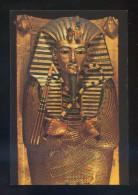 *Museo Egipcio...* Ed. C. Y Z. Nº 24001-2. Nueva. - Museos