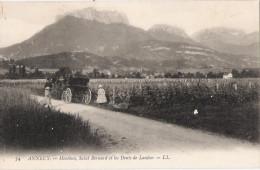 74 -  ANNECY - Menthon, Saint Bernard Et Les Dents De Lanfon - Annecy