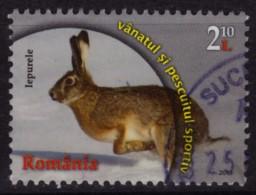 Rabbit / Lapin - 2013  ROMANIA - Used - Konijnen