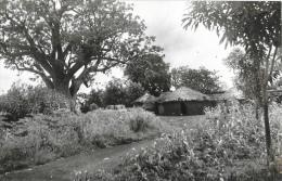 Togo - Gando - Région Des Savanes - Carte-photo - Togo