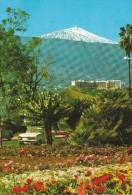 España--Tenerife--Puerto De La Cruz--Paisaje, Al Fondo, El Teide - Flores
