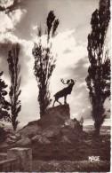 Beaumont-Hamel -le Caribou Du Parc Commémoratif Terre Neuvien - (a2903) - Otros Municipios