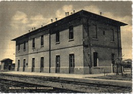 Emilia Romagna Ferrara Stazione Ferroviaria Veduta Interna Migliaro Ferrara - Stazioni Senza Treni