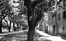 58Cc   83 Nans Les Pins Cours General De Gaulle - Nans-les-Pins