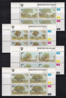 VENDA, 1991, MNH Controls Blocks Of 4, Indigenous Trees, M 229-232 - Venda