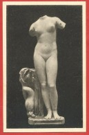 CARTOLINA NV LIBIA - CIRENE - Le Terme - Afrodite Anadyomene - Museo Nazionale Roma - 9 X 14 - Sculture