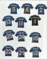MAGNET , SPORT , FOOTBALL , Maillot équipe De FRANCE , Dédicacées , LOT DE12 MAGNETS - Sports