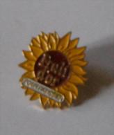Boulangerie Fruit D'or Pour Patissier Fleur De Tournesol - Alimentation