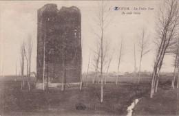 Scherpenheuvel - Zichem - (´Henri Georges 3 ) De Oude Toren - Scherpenheuvel-Zichem