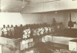 Prensa E Pisa Cruzada - Foto Alvão Pertencente Ao I.V.P. (Postal Recente 1987) (Ver Edição Dentro Do Leilão) - Porto