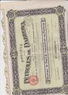 Pétroles De DABROXA  -N° 007.985 -LILLE Le 15 Mars 1920 - Pétrole