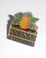 Ananas Production - Alimentation