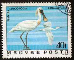 HUNGARY - Scott #2457 Platalea Leucorodia (*) / Used Stamp - Storks & Long-legged Wading Birds