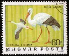 HUNGARY - Scott #2458 Ciconia Ciconia (*) / Used Stamp - Storks & Long-legged Wading Birds