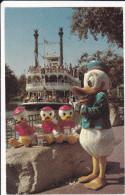 CPSM DISNEYLAND  DONALD AND HIS NEPHEWS - Disneyland