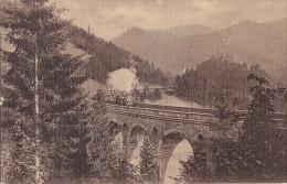 Autriche - Semmeringbahn / Jägergraben - Chemin De Fer - Semmering