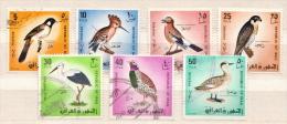 Iraq Used Set - Birds