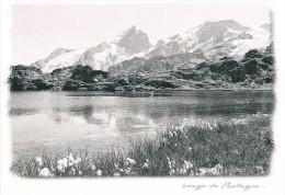 Image De Montagne : Le Petit Lac Près Des Glaciers - La Meije, Le Lac Lérié - Photo : R.G. COLLOMB - Circulé, 2 Scans - Photographie