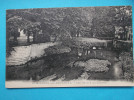 17 : DAMPIERRE Sur BOUTONNE : Les DOUVES Du  CHATEAU   ,  C.P.A. Carte En Trés Bon état      , - Châteaux