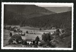 AK Frammersbach, Pension Und Gaststätte Kupfermühle, Forsthaus - Germania
