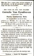Van Eyndhoven Cornelis - Bols Maria,Catharina ° Weelde 1864 + 1946 Aldaar Lot.7810 - Images Religieuses